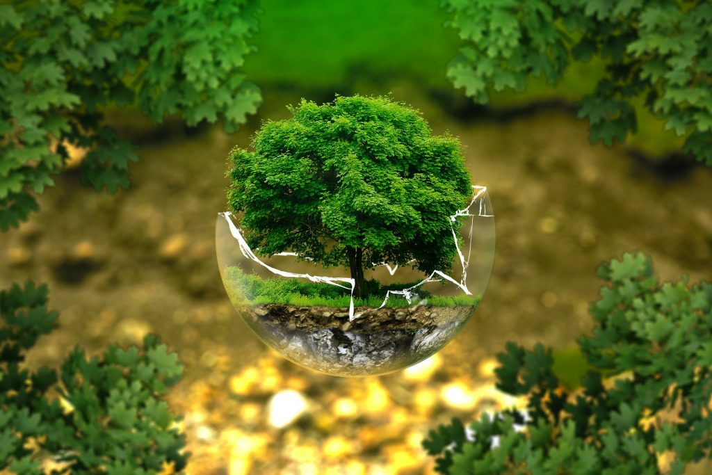 Jornada Producción Ecológica